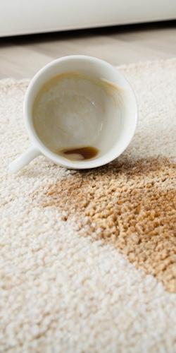 Carpet Care and Maintenance | Independent Floor Covering