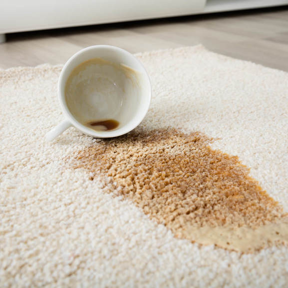 Coffee spill on area rug | Independent Floor Covering