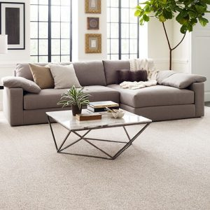Comfortable carpet | Independent Floor Covering