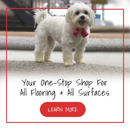 Pet friendly floors | Independent Floor Covering